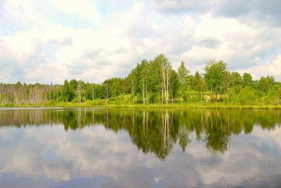 Ногинский район д. Большое Буньково, участок 10 соток Фото 3