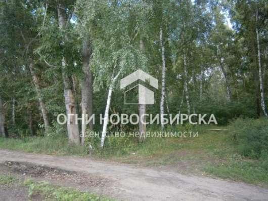 дом, Новосибирск, лдайская, 50 кв.м. Фото 2