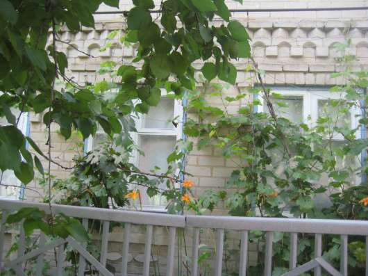 Срочно продам дом в селе Беленькое 40 км. от Запорожья