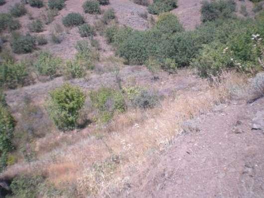 Продается участок в г.Алушта, с.Приветное, прибрежная зона Фото 3