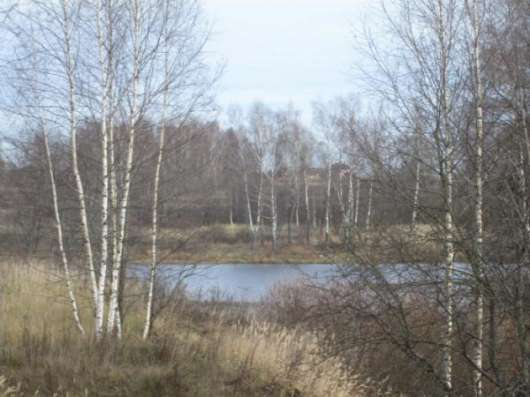 Продается земельный участок 8 соток в СНТ «Уваровка» в Можайском р-не,130 км от МКАД по Минскому шоссе Фото 2