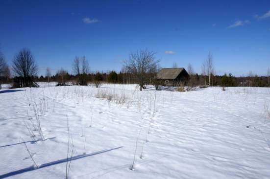 Бревенчатый дом в тихой деревне, рядом с речкой в Ярославле Фото 4