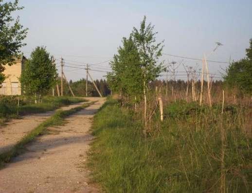 Продается земельный участок 12 соток в д. Бурмакино, Можайский р-н,131 км от МКАД по Минскому шоссе. Фото 4