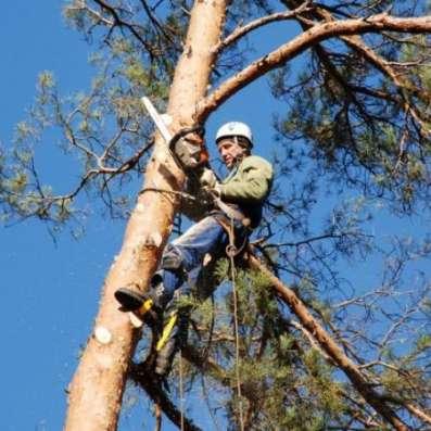 Услуги промышленных альпинистов в Ярославле Фото 1