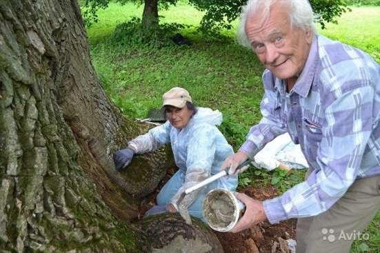 Лечение любых садово-парковых растений, Микро-инъекции