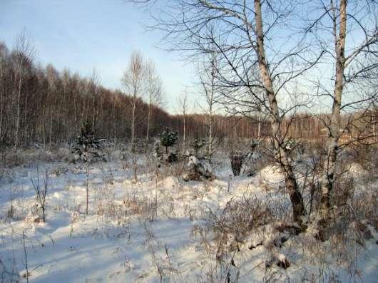 Участок 14 сот. (ИЖС) в Новосибирске Фото 2