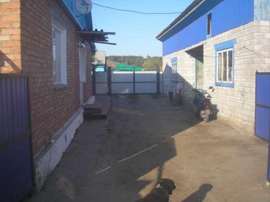 Дом на берегу Енисея, с. Лебяжье Красноярский край
