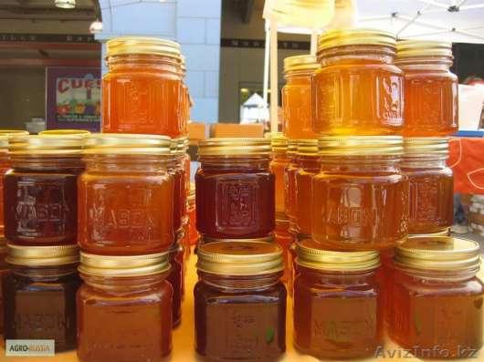 Натуральный мед (ЭЧП) от производителя