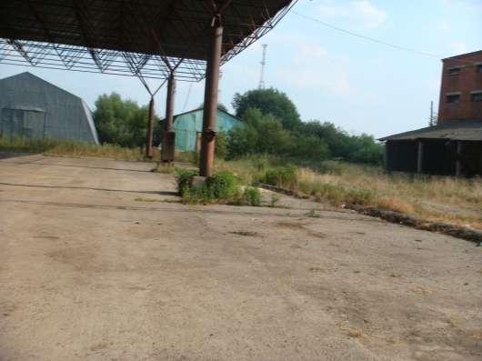 Аренда навеса под производства 1000 м2 в г. Чехов Фото 3