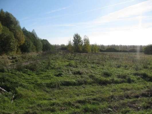 Продам участок 4.5 га, земли сельхозназначения (СНТ, ДНП) в Кстове Фото 1